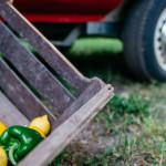Gaumenganoven_Website_Der-Truck-12