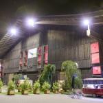 Gaumenganoven_Website_Der-Truck-6
